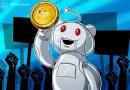 Una ola de nuevos usuarios inunda las comunidades de Dogecoin y las criptomonedas en Reddit