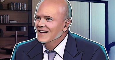 Mike Novogratz critica a las autoridades estadounidenses por su escaso conocimiento sobre criptomonedas