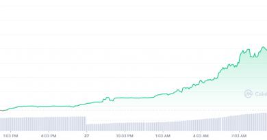 ForeverFOMO sube 892% en las últimas 24 horas, mientras que KPOP Fan Token pierde un 98.91%